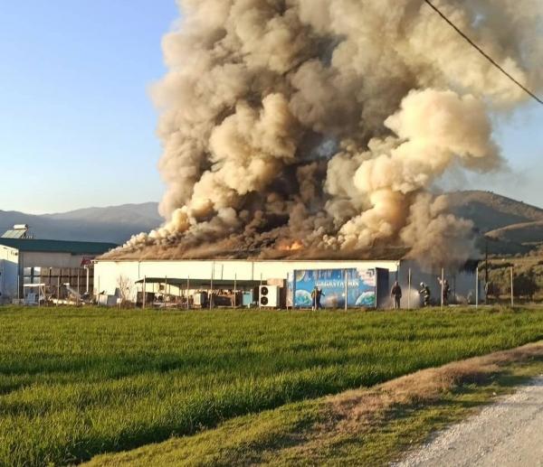 Κάηκε ολοσχερώς το εργοστάσιο του «Υφαντή» στα Τρίκαλα (vid)