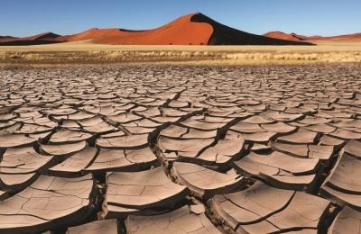 Bayer: Επιβεβαιώνει την ηγετική της θέση στον τομέα των δράσεων βιωσιμότητας για το κλίμα