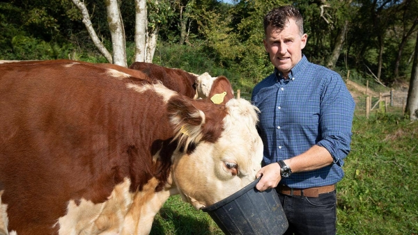 Barclays launches £250 million in financial support to help farmers drive Sustainability through Agri-Tech