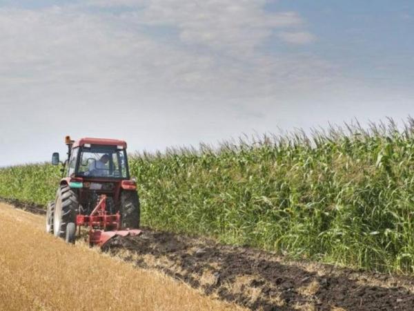Από 16 έως 23 Οκτωβρίου η προκαταβολή της Ενιαίας Ενίσχυσης στους αγρότες