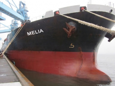 Diana Shipping Inc. Announces Time Charter Contract for m/v Melia with Ausca