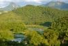 Zurich to sponsor reforestation in Brazil's Atlantic Forest