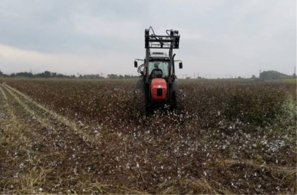 Πιστώνεται σήμερα το 70% της Βασικής Ενίσχυσης σε 540.000 αγρότες